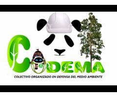Volutariado para ayuda Social Ecologica